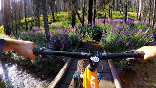 This is ass-kicking splendor | Mountain Biking Osberg Ridge in Sun Valley Idaho