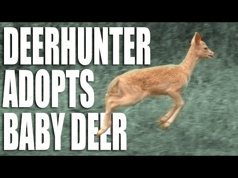 Deerhunter Adopts Baby Deer