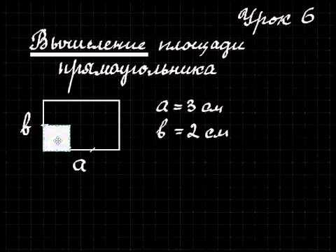 Математика  Урок 6  Вычисление площади прямоугольника