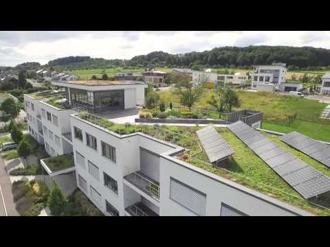 Green Roof Systems, this building shows the full range!