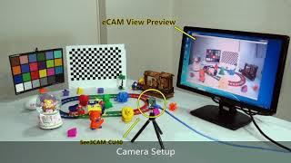 see3cam - 123Vid