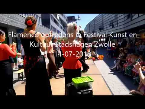 Flamenco danslessen voor beginners in Zwolle!