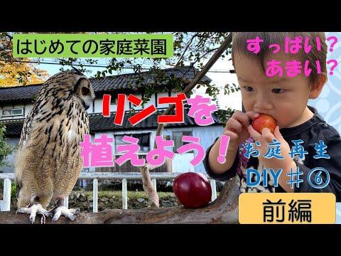 , title : '実のついたリンゴの木買ってきた【リンゴの木を植えてみた前編】家庭菜園 お庭再生DIY♯6