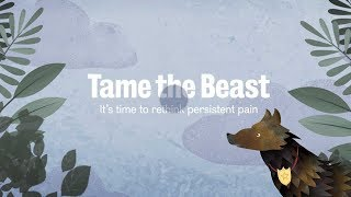 Tame The Beast — It's time to rethink persistent pain