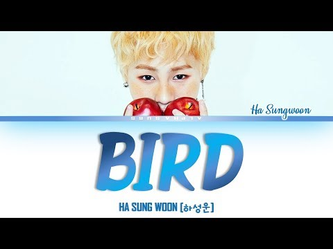 하성운 (HA SUNG WOON) - BIRD Color Coded 가사/Lyrics [Han|Rom|Eng]