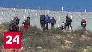 Кабмин США может уйти в отставку из-за разгогласий по мексиканской стене - Россия 24