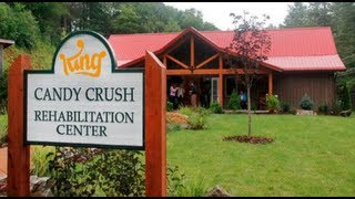 How to get free life's in Candy Crush Saga / Hoe krijg je gratis levens in Candy Crush Saga?