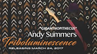 "Andy Summers ""Giganthopithecus"" Audio"