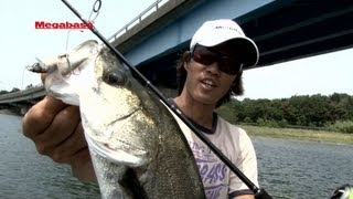 MEGABASS MOVIE #154 ONETEN Jr SW