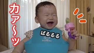キウイフルーツ食べてすごい反応する赤ちゃん!