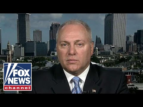 Scalise blasts House Dems, says they're afraid of the 'radical left'