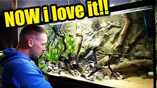 An aquarium rescape and set up