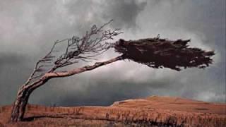 اغاني حصرية لما فارقوا - خالد الشيخ.wmv تحميل MP3