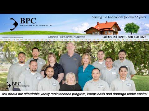 BPC Pest Control