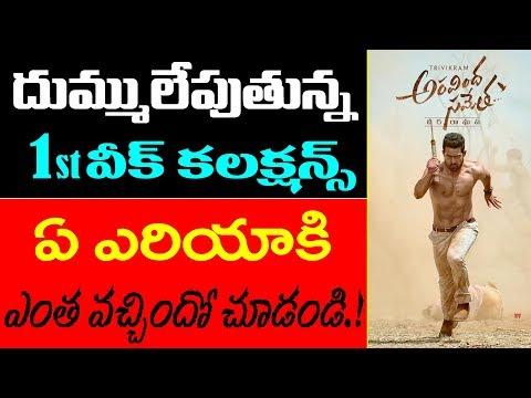 NTR First Week Collections | Aravinda Sametha Movie | Jr NTR | Trivikram | Box Office Records