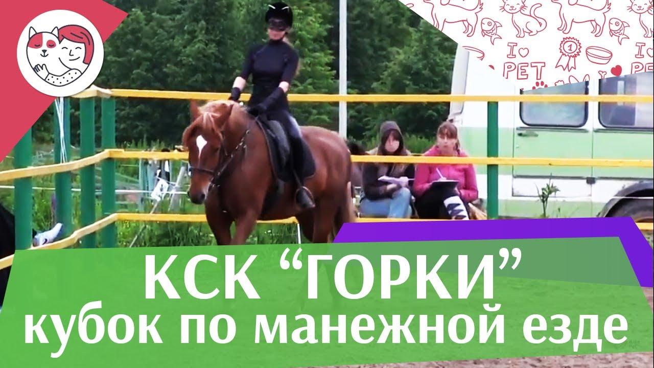 Летний кубок КСК Горки по манежной езде КЮР часть 16 на ilikepet