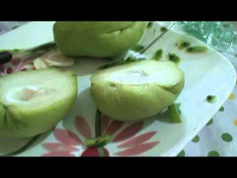 Chayote Squash & Nopal Cactus Salad ~ Diabetic Test Kitchen