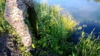 Приспособления для ловли рыбы в пруду