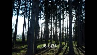 三島由紀夫の声最後の対談後半