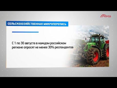 С 1 по 30 августа во всех регионах России будет проходить сельскохозяйственная микроперепись