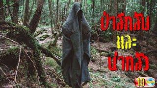 10 ป่าสุดหลอนและน่ากลัวจากทั่วมุมโลก (มีไทยด้วย)   10 haunted forests around the world
