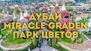 VLOG: Дубай/ Чудо-сад Miracle Garden, часть 1/Куда сходить, что посмотреть в Дубае