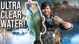 BIGGEST BASS I HAVE EVER CAUGHT ON CAMERA!