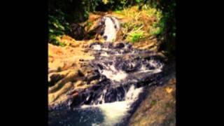 Canto a Colombia-Juan Luis Guerra