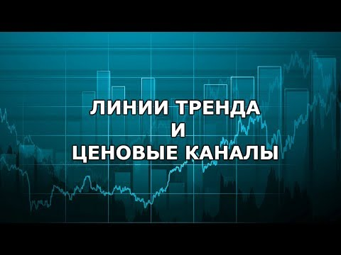 Дмитрий васильев биткоин