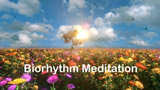 Biorhythm Meditation – Music To Increase Your Vibration And Attract Money, Health, Love