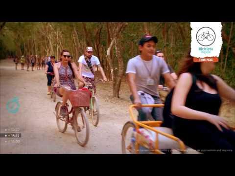 Tour Tulum +  Cobá + Cenote