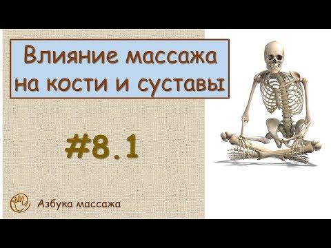 Влияние массажа на кости и на суставы | Урок 8, часть 1 | Уроки массажа