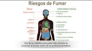 El envase neutro de los productos de tabaco: una nueva estrategia para el control del tabaquismo