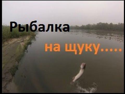 Рыбалка чаус уень