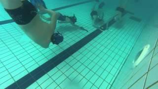 preview picture of video 'Hockey Subaquatique entrênement piscine montfort/Meu'