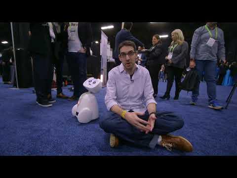 Blue Frog's dancing Buddy companion robot hands-on