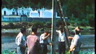 Video del alojamiento Cabañas da Ria