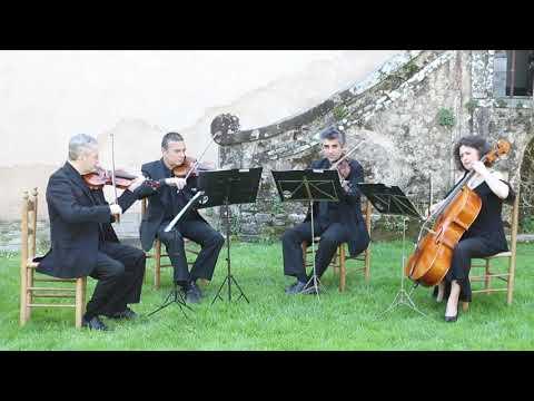 Angelo Corvino Violino classico e elettrico. Viareggio musiqua.it