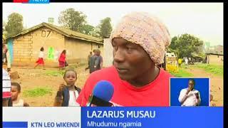Ngamia wa mjini ambao wamekuwa wakishirikishwa katika biashara