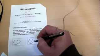 How to Vote in a Referendum