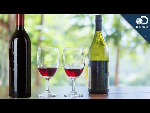 Does Expensive Wine Really Taste Better?