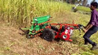 Máy cắt cỏ bò - Công nghệ xanh
