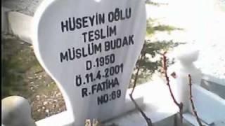 TESLİM BUDAK-KAYANIN DİBİNDE OY OY..