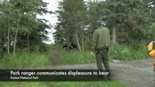 Bear Safety Tips While Hiking in Alaska 720p