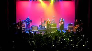 The One I Love - Steve Kilbey - Celebrating R.E.M.