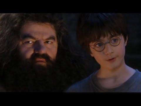 Harry Potter - Vánoční dárek (CZ Dabing)
