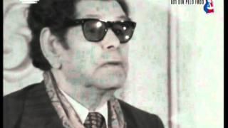 Video Fado Cravo de Alfredo Marceneiro
