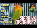 Lovebird Kusumo vs Roro vs Marco vs Putri Dewi Semua Ngekek Panjang, Siapa yg Juara?