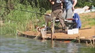Платные рыбалки в мытищинском районе