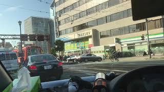 松山市リアルドックファイトの末